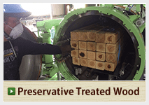 Preservative Treated Wood